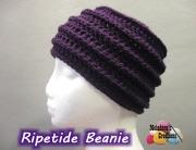 Ripetide Beanie  1 600 WM