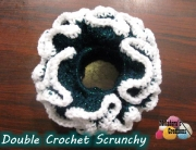 Teal scrunchie 600 WM