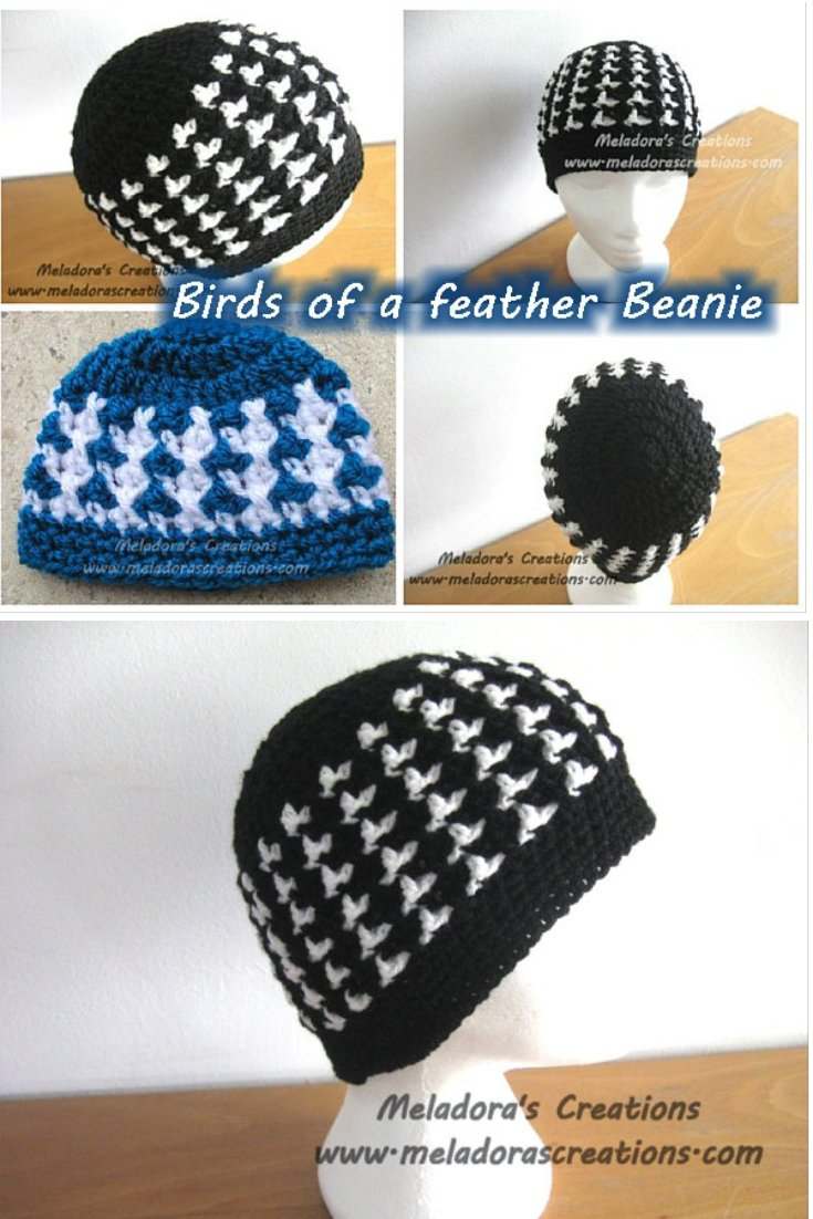 Birds of a Feather Beanie - All Sizes - Free Crochet Pattern