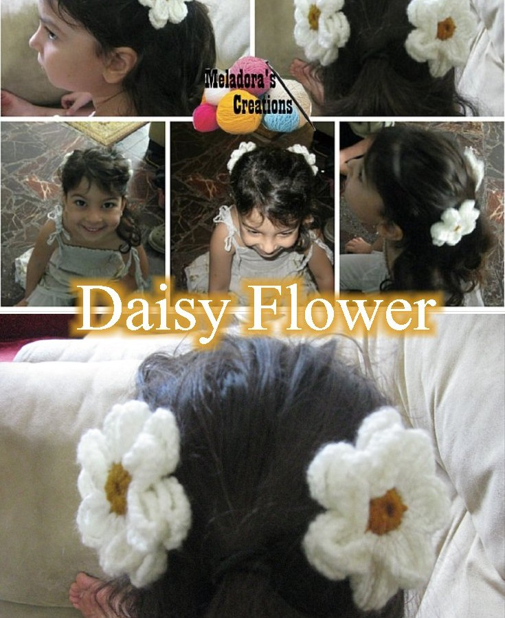 Crocheted Daisy Flower Pinterest