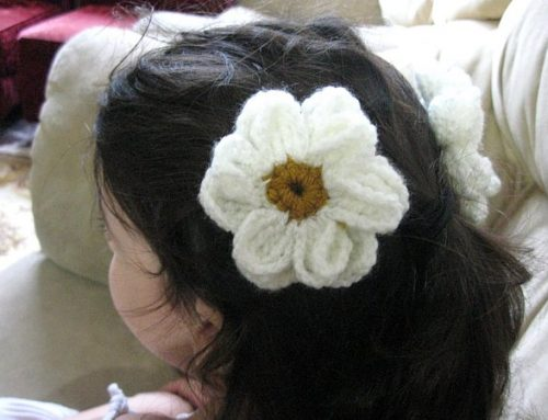 Crocheted Daisy Flower – Free Crochet Pattern