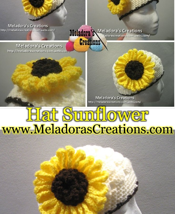 Hat Sunflower Pinterest