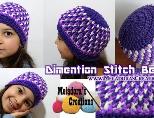 Dimension Stitch Beanie – Free Crochet Pattern