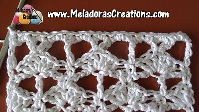 Lacy Shell 15