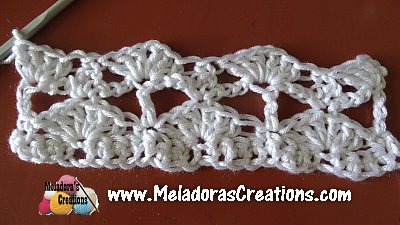 Lacy Shell 6