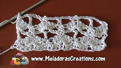 Lacy Shell 7