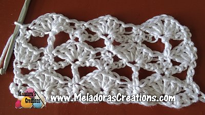 Lacy Shell 9
